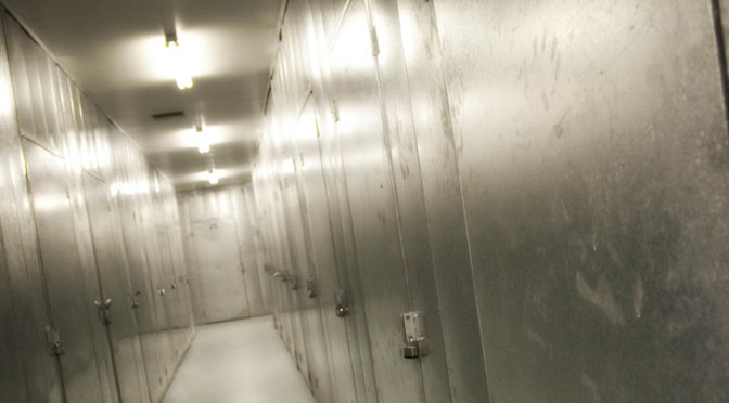 Well lit hallway of small storage units with silver doors